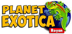 Planet Exotica | Euro Palace Casino Blog