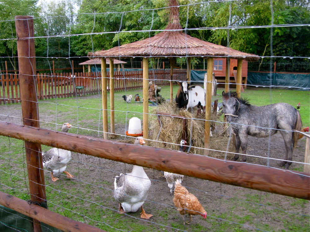 Image Result For Mini Farm Plan