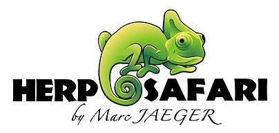 Herp Safari