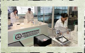 Laboratoire et nurserie